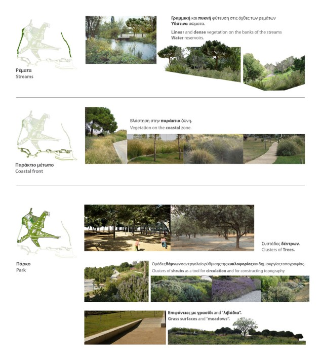 biodiversity_vegetation2
